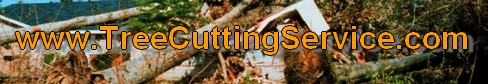 tree cutting contractor logo