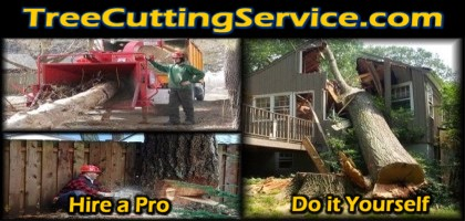tree cutting service web logo